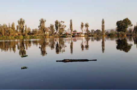 Xochimilco – die schwimmenden Gärten von Tenochtitlán
